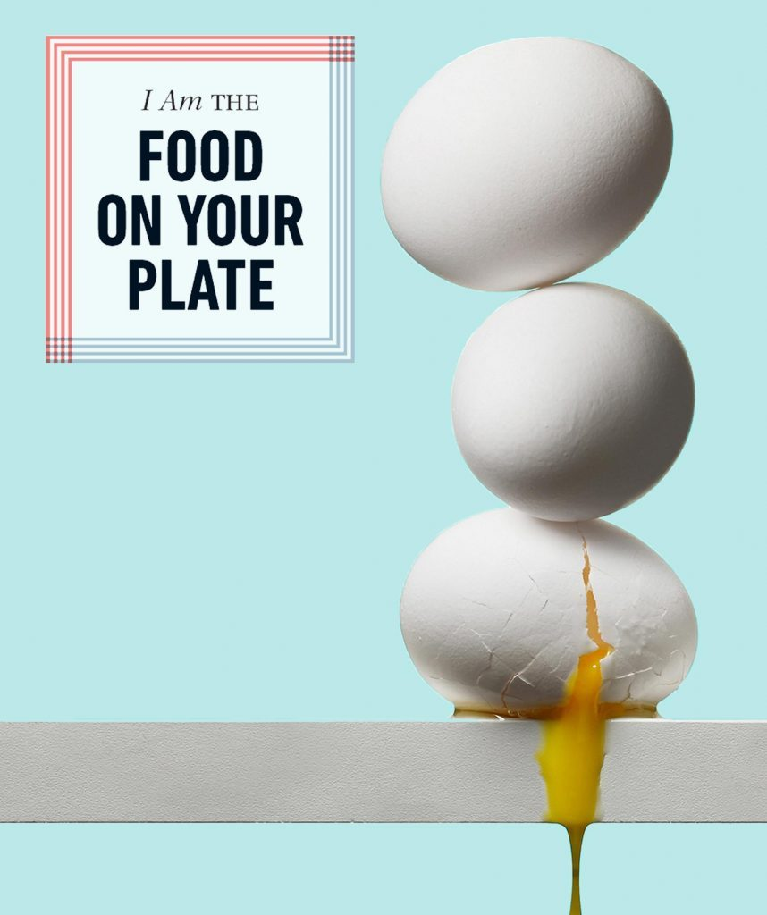 Eggs the food on your plate