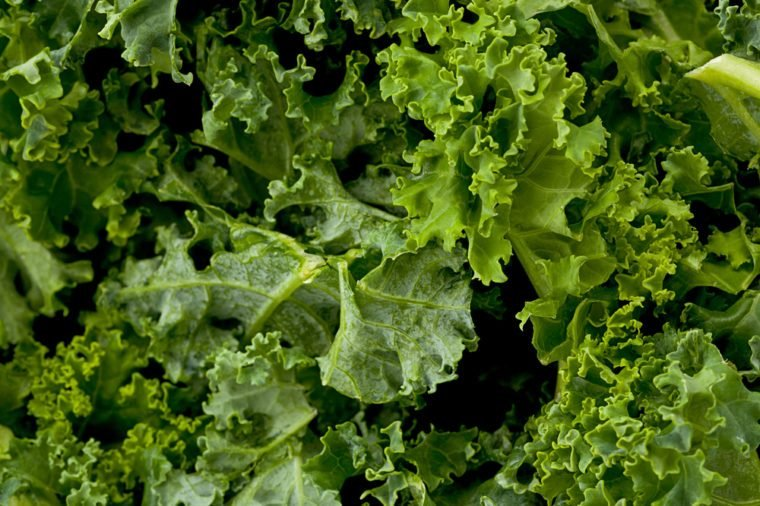 Background texture of kale greens.