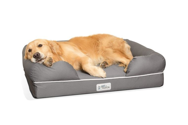 "PetFusion Large Dog Bed w/Solid 4"" Memory Foam, Waterproof liner, YKK premium zippers. [Multiple Sizes, Colors]. Breathable cotton blend, removable & easy..."