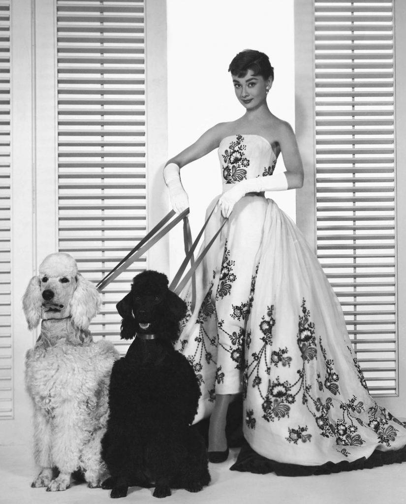 Sabrina - 1954