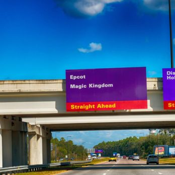 Here's Why Disney World Uses Purple Traffic Signs