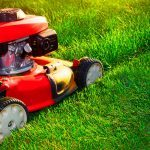 This Is the Most Efficient Way to Mow the Grass