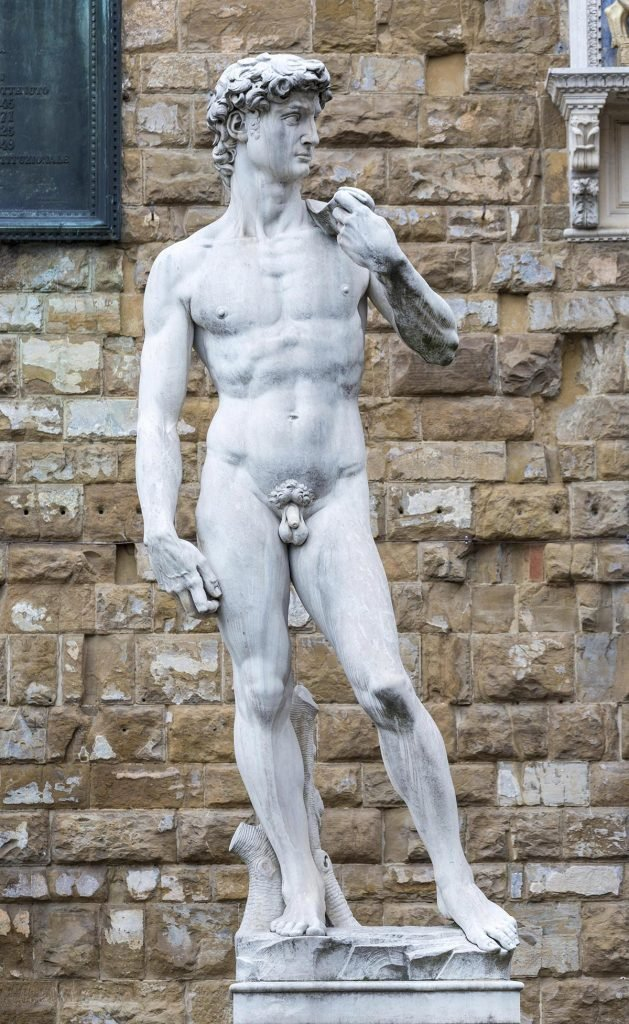 VARIOUS Marble statue David by Michelangelo in front of Palazzo Vecchio, Piazza della Signoria, Florence, Italy