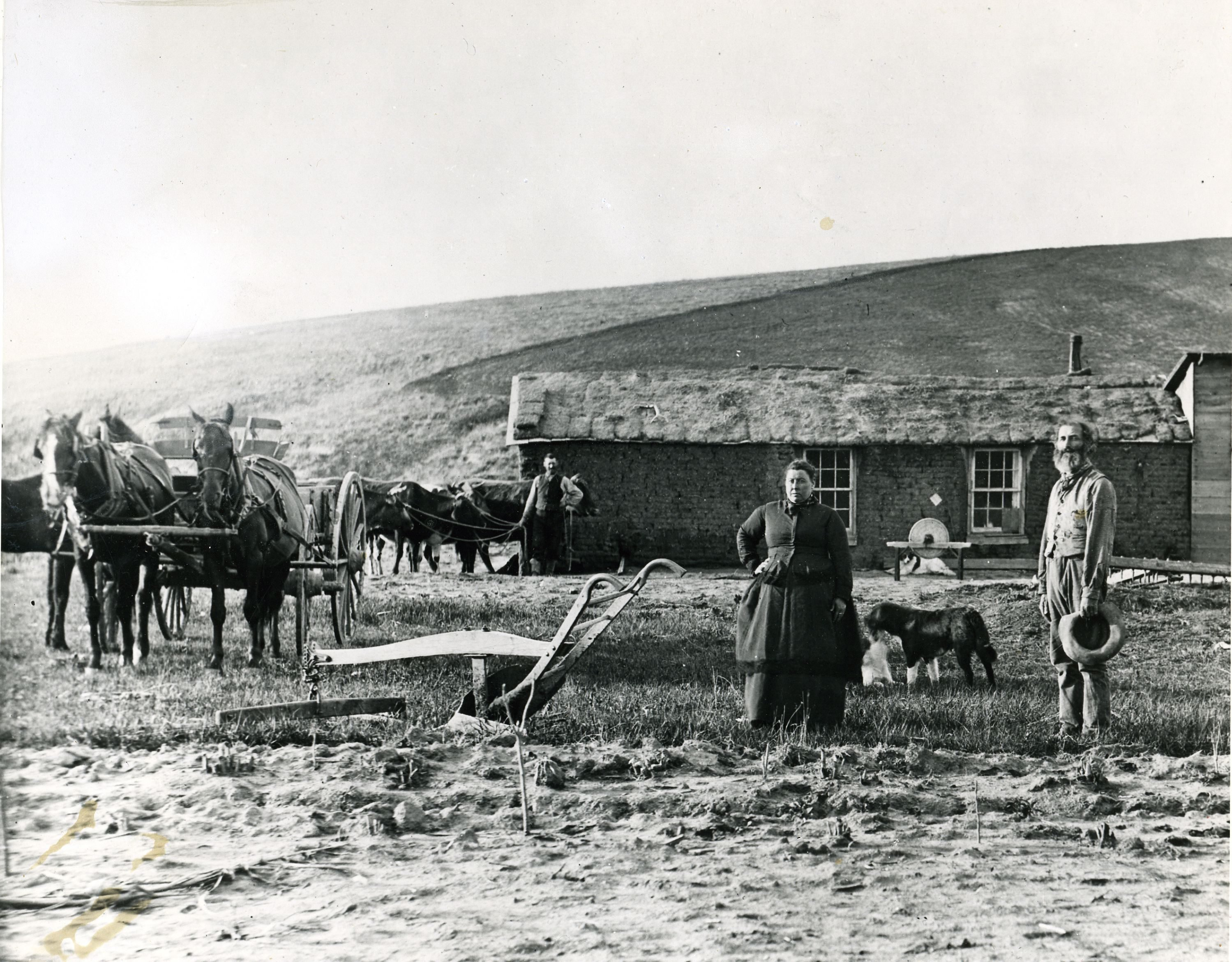 Various 1880's Custer County, Nebraska - Farmhouse Made From Sod. Often The Only Building Material On The Treeless American Plains