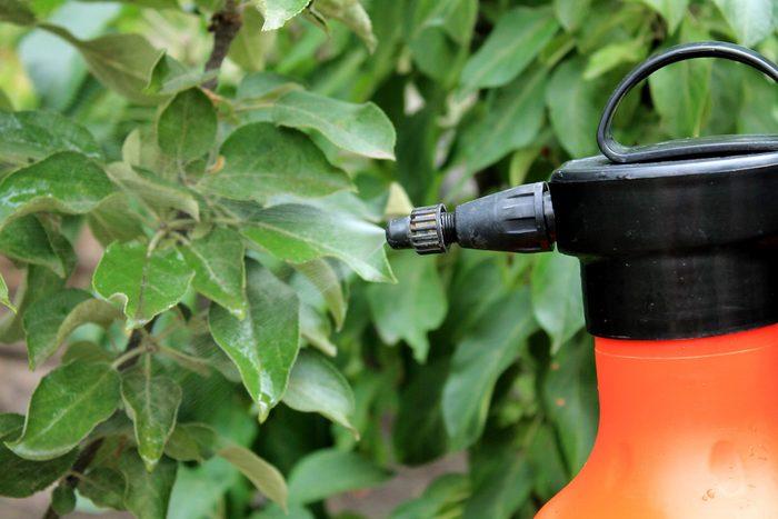 gardening spray