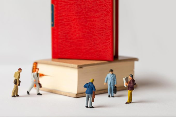 mini figures books