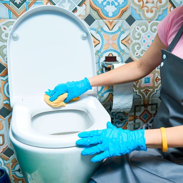 Natural Toilet Bowl Cleaner