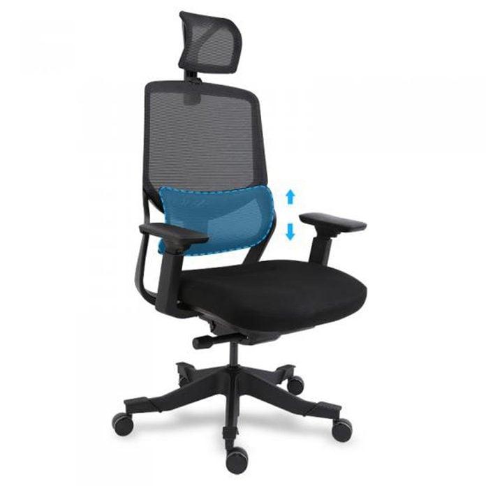 For the mom boss: Flexispot Soutien Ergonomic Office Chair
