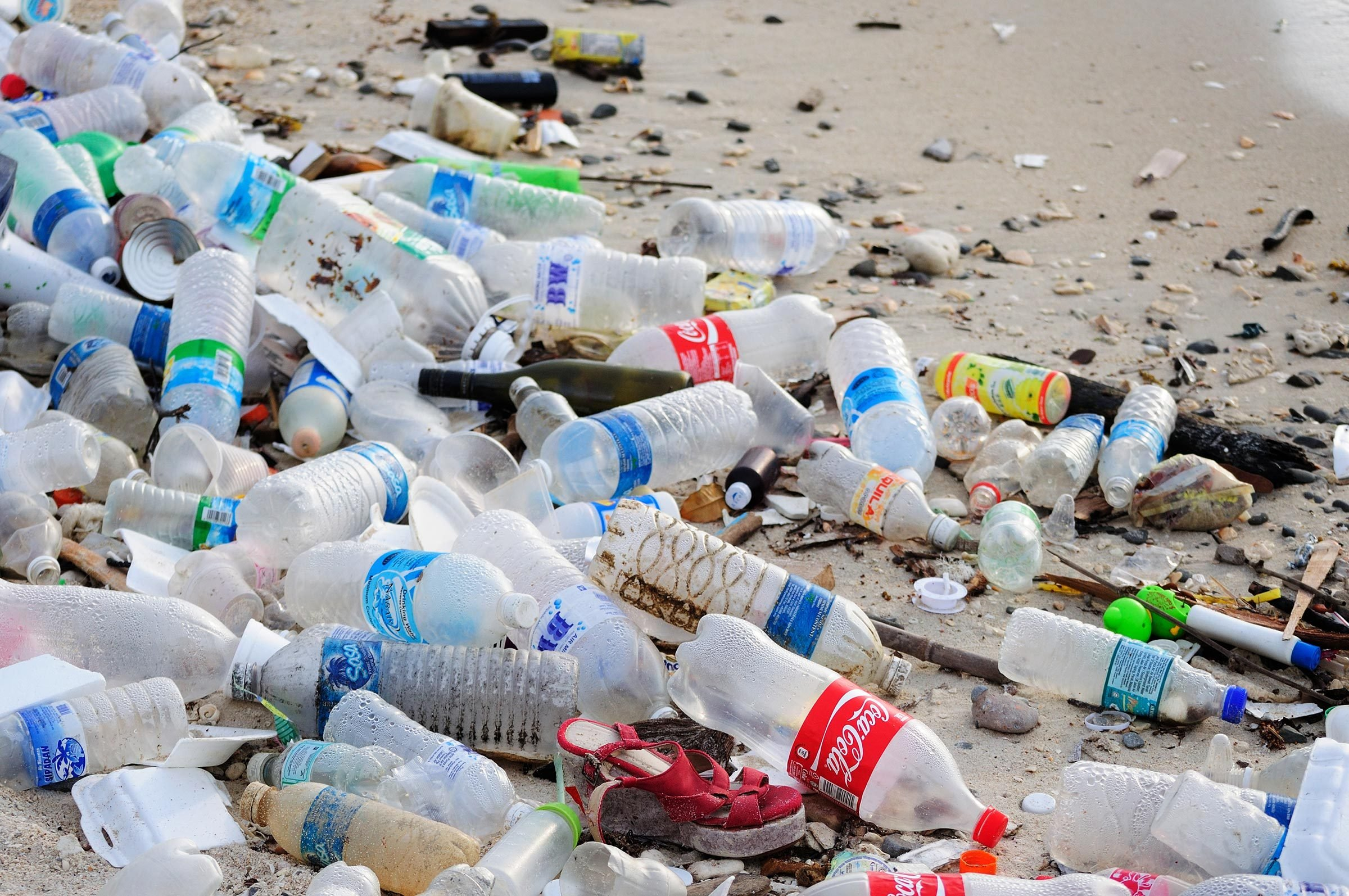 KOTA KINABALU, MALAYSIA - MARCH 13, 2016: Garbage and plastic bottles on a beach left in Kota Kinabalu beach.