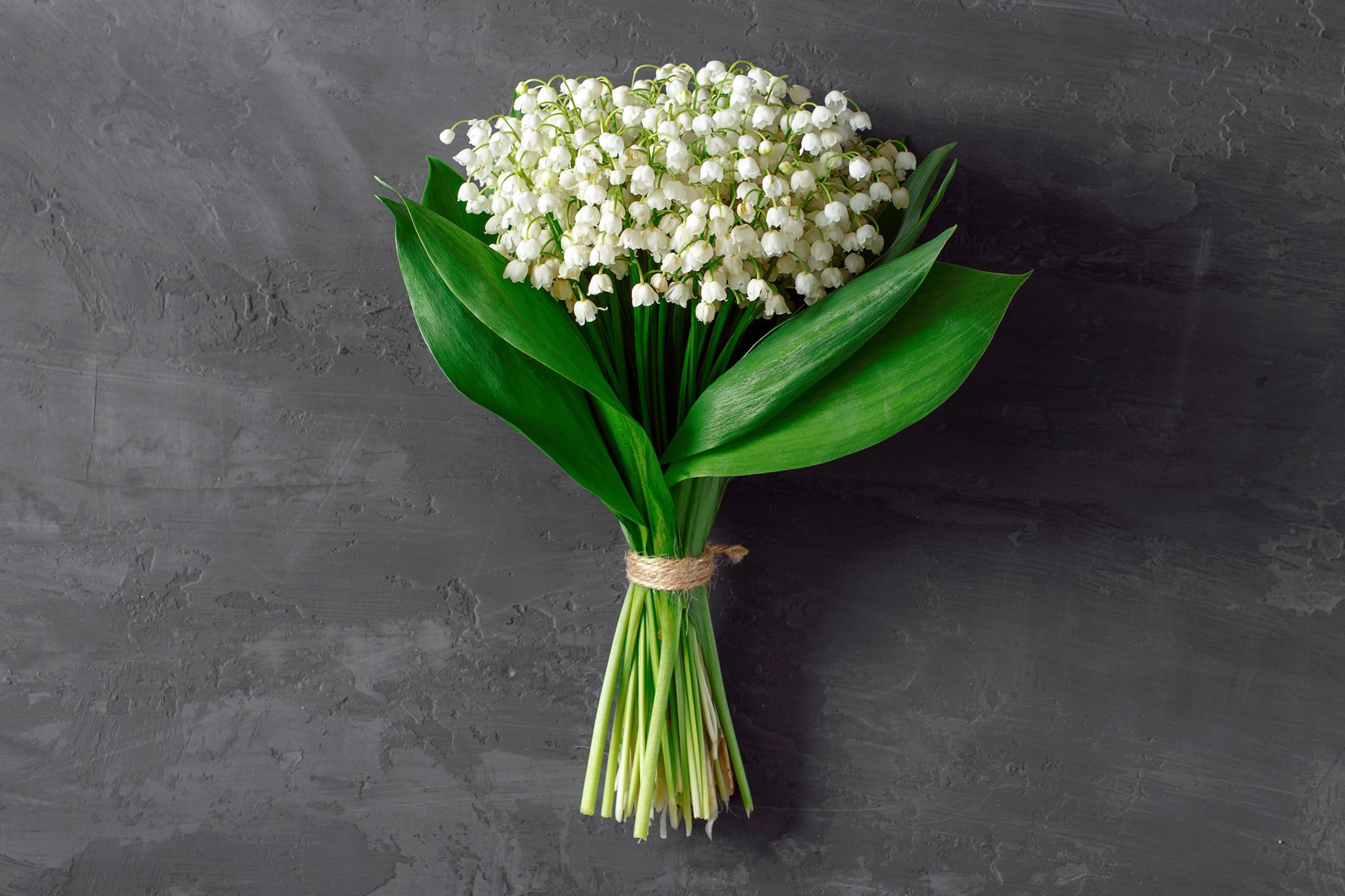 Culture Du Muguet En France why may day is so important to the french | reader's digest
