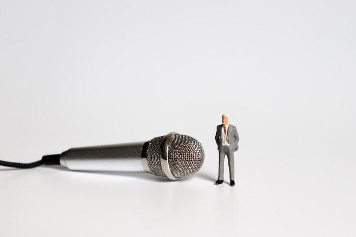 miniature figure microphone