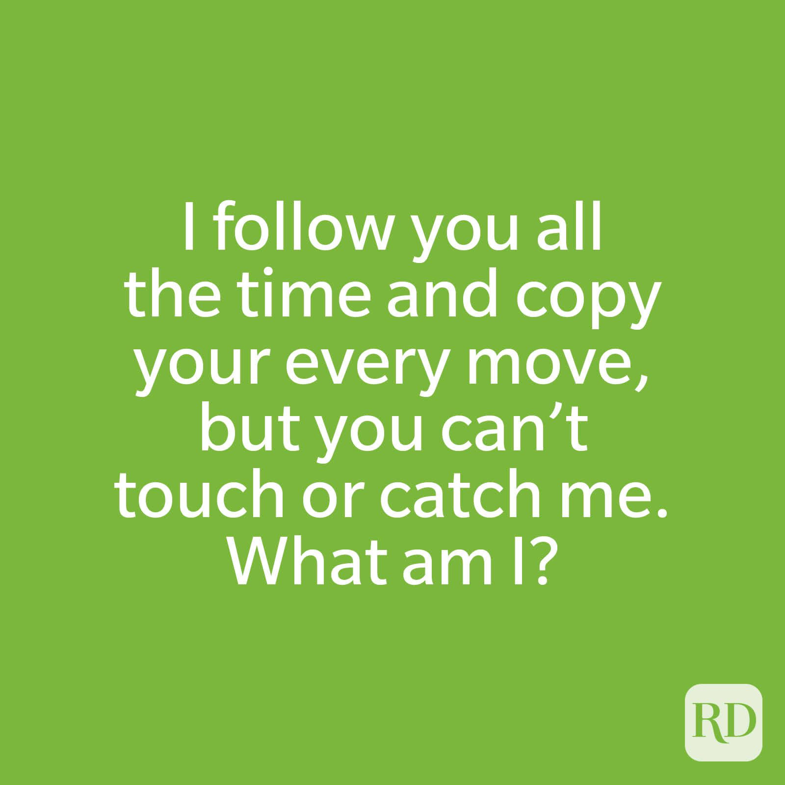 I follow you all the time and copy your every move, but you can't touch or catch me. What am I?