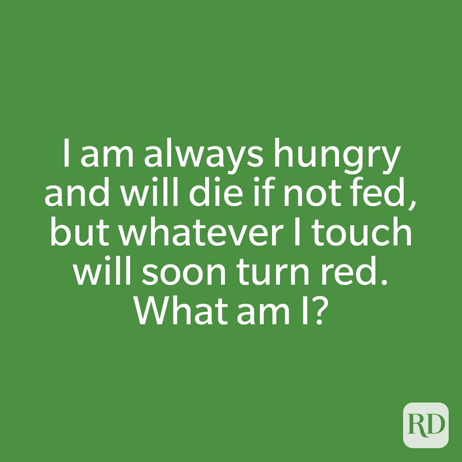 I am always hungry and will die if not fed, but whatever I touch will soon turn red. What am I?