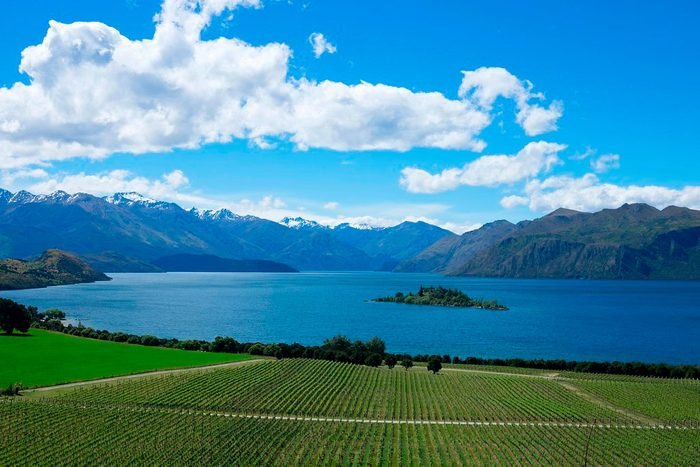 rippon winery, new zealand
