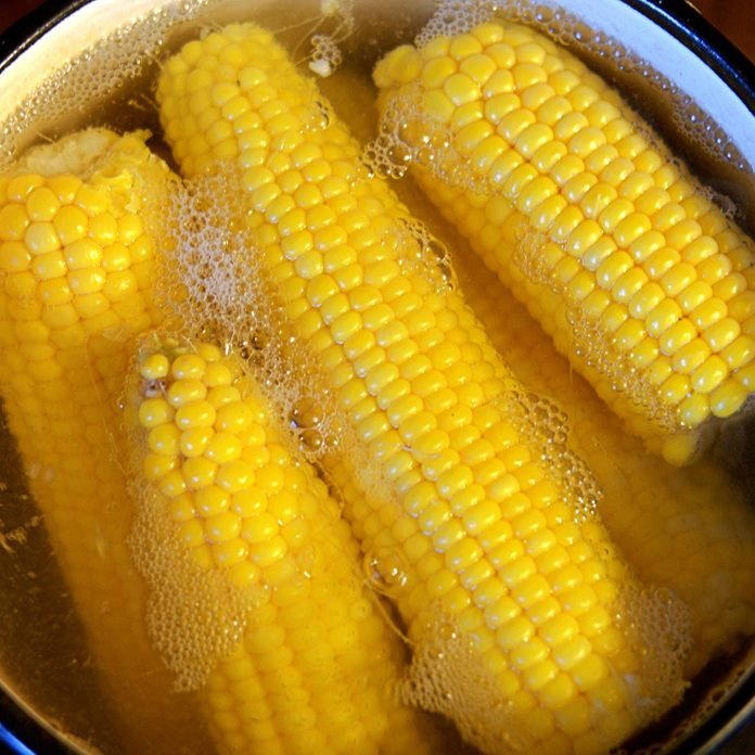 Boiling cobs of fresh sweet corn