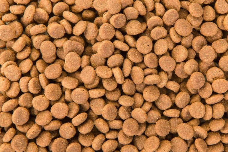 Full- frame close up of dried round brown pet kibbles food seen from a high angle view