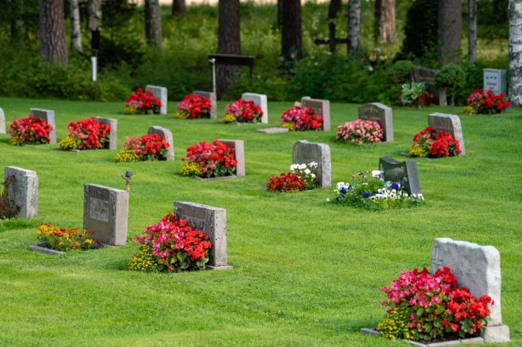 Rows of gravestones with colorful red and pink flowers, on a beautiful and well cared cemetery