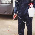 The Best Bed Bug Exterminator in Every State