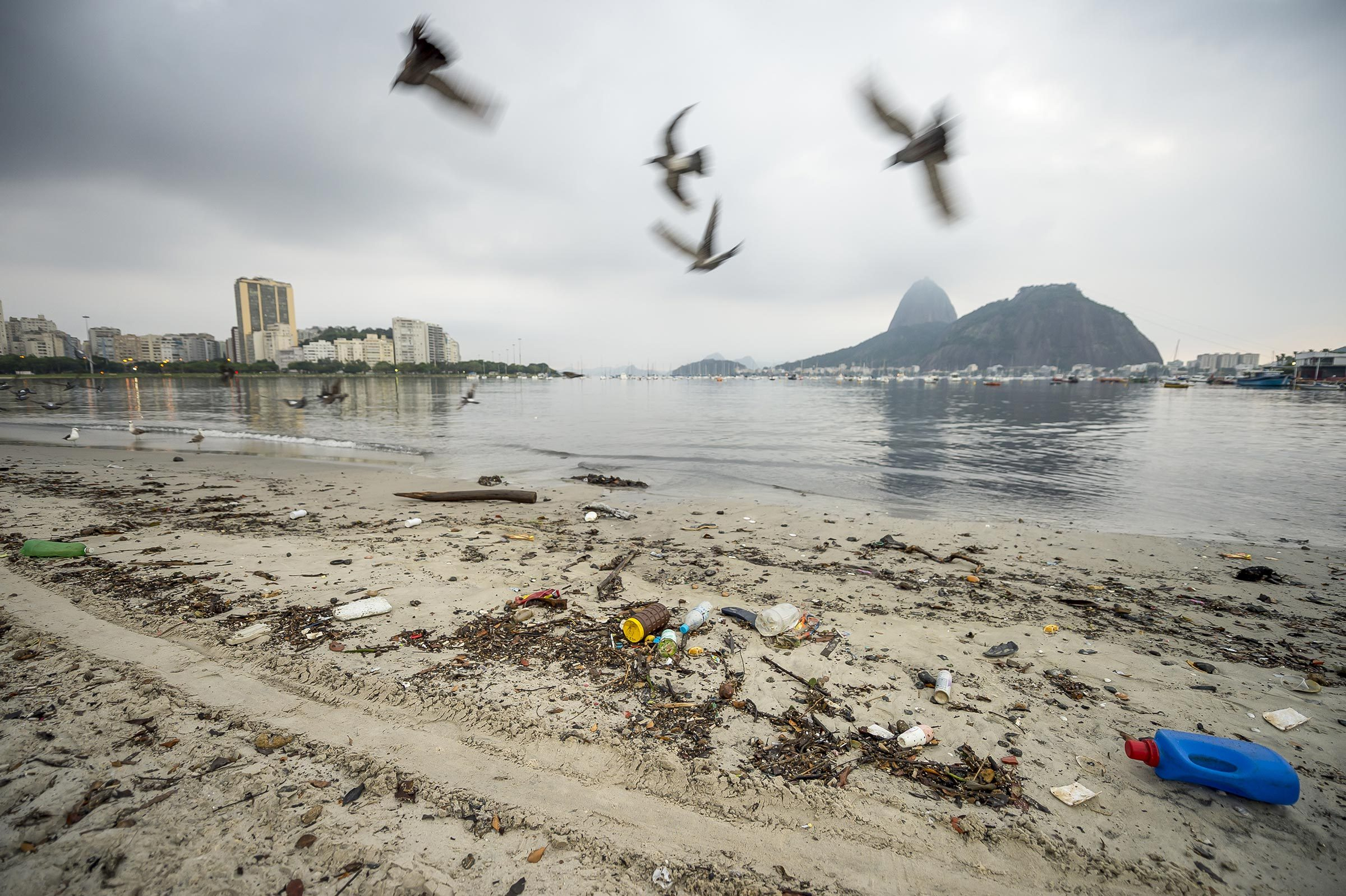 Garbage and pollution from Guanabara Bay wash ashore on Botafogo Beach in front of Sugarloaf Mountain in Rio de Janeiro, Brazil