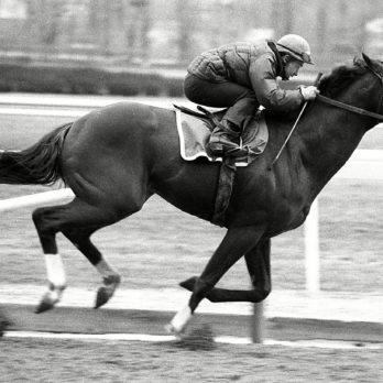 The 13 Most Famous Horses in Kentucky Derby History