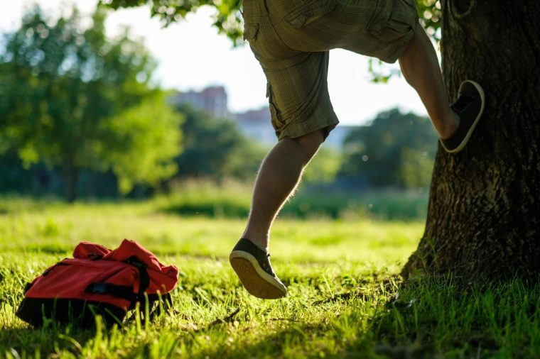 Young hipster man climbing on a tree in a park