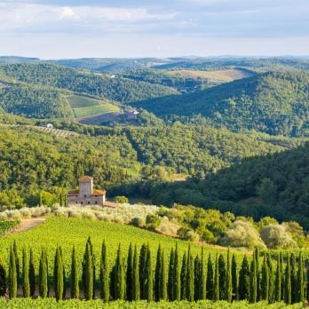 The 14 Most Gorgeous Wineries Everyone Should Visit at Least Once