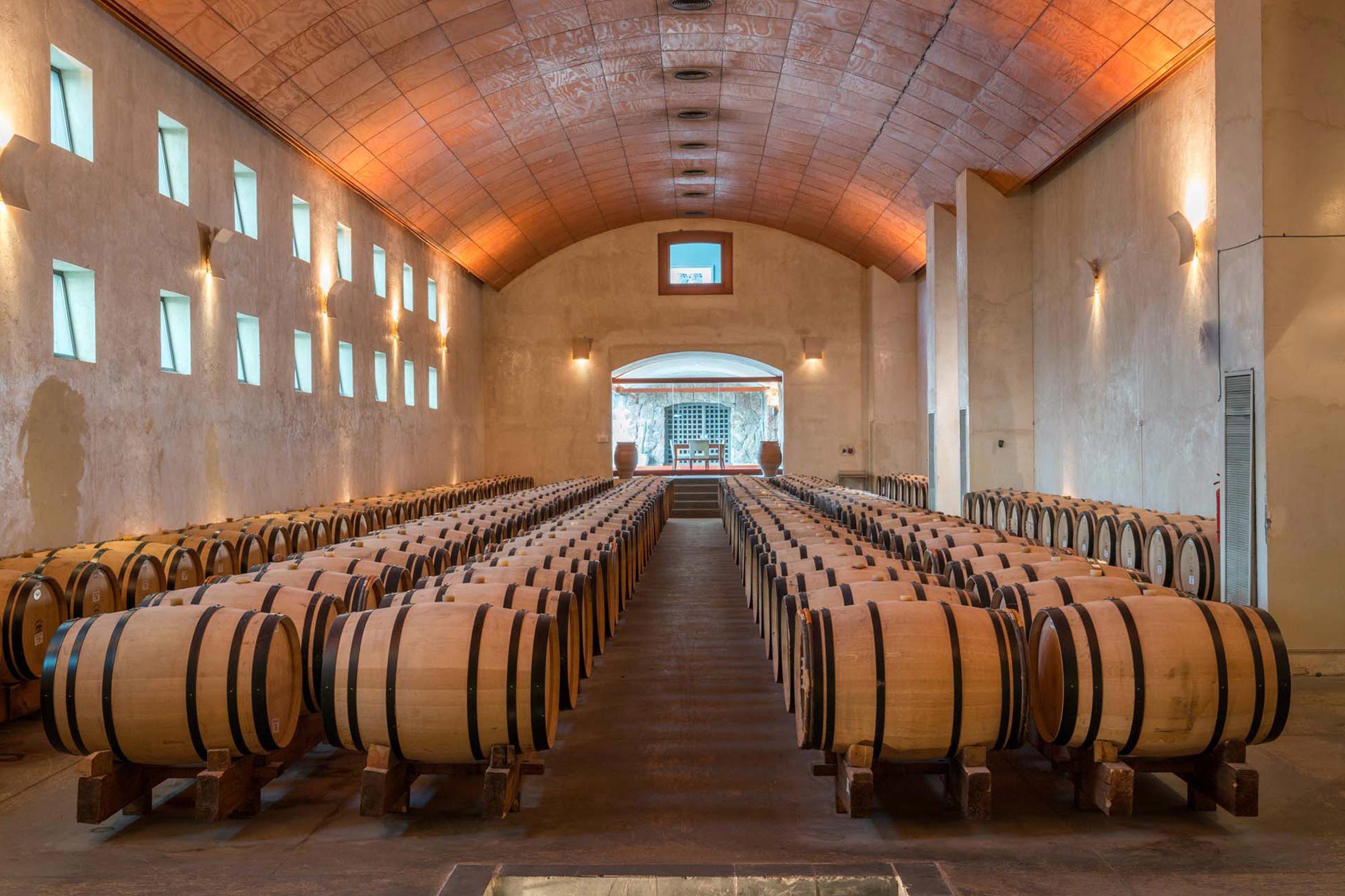 winery-san-pedro