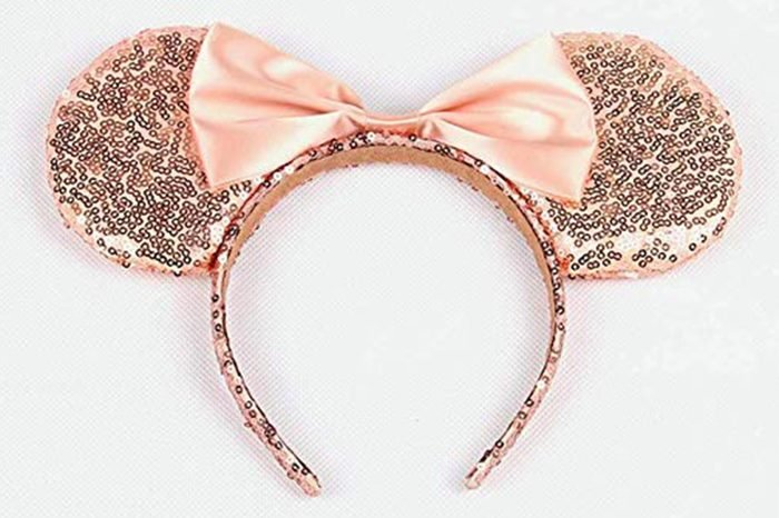 09_Florida--Mickey-Mouse-ears
