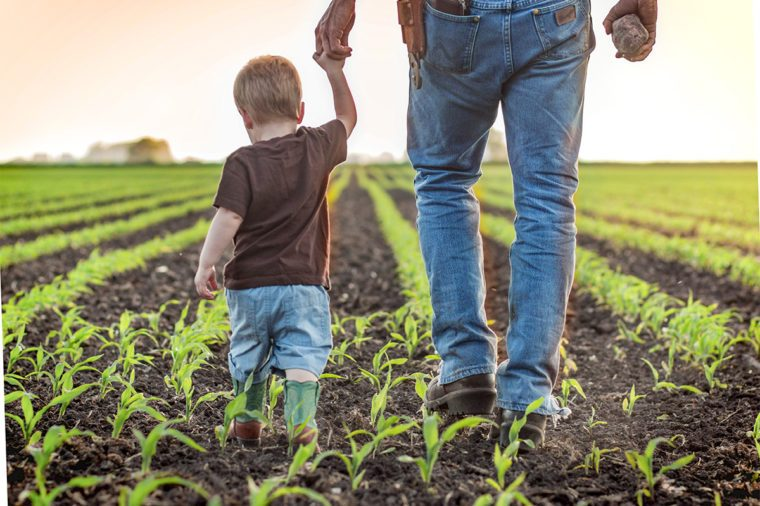 father son holding hands in field