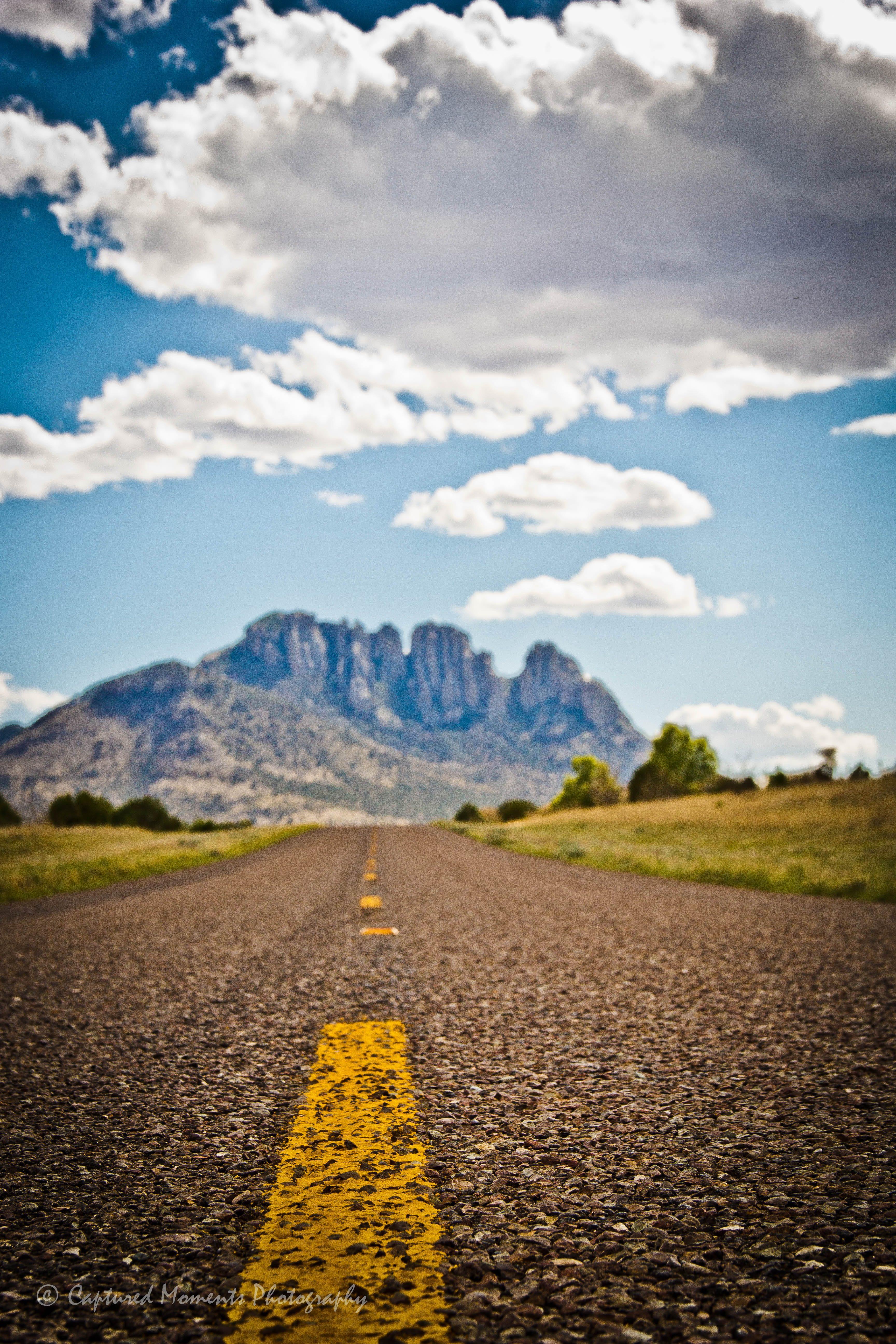 جنون التصوير : لا تستلقي في الطريق