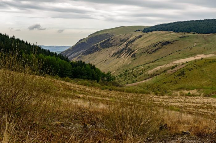 Cambrian Mountains near Tregaron Wales