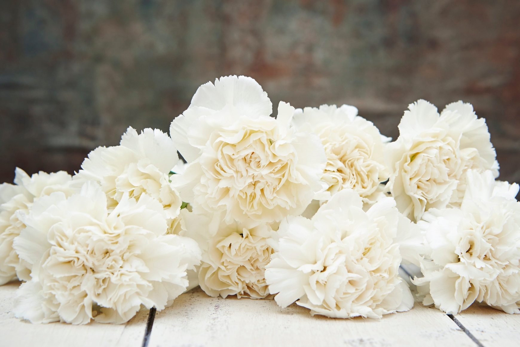 white Carnations for mothers day