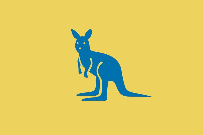 Kangaroo Words Answer