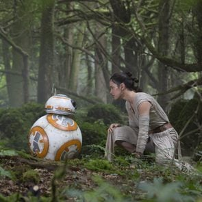 Puzzlewood Forest Star wars