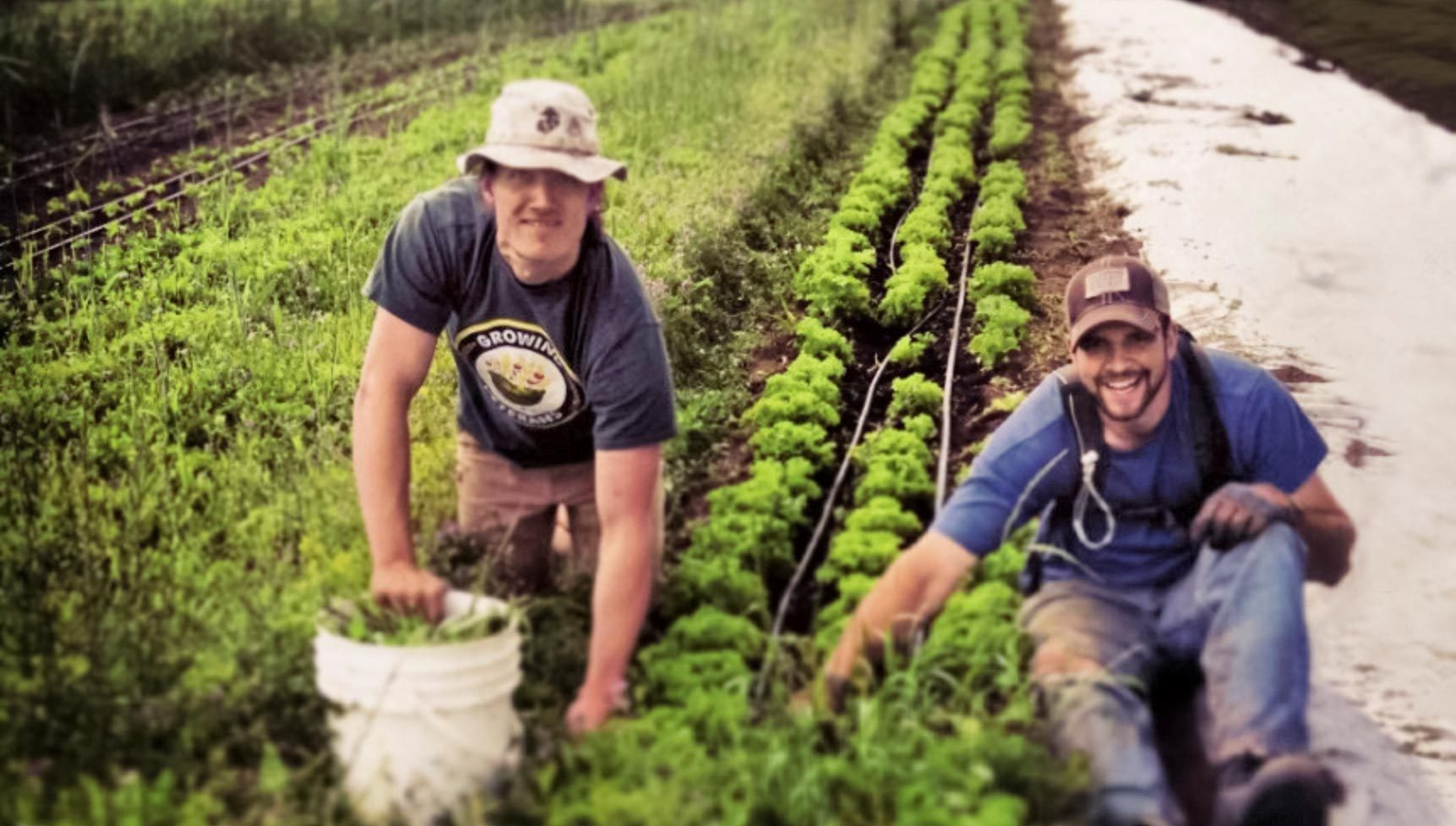 5 Heartwarming Stories of How Veterans Continue to Help Each Other Even After War Planting Hope