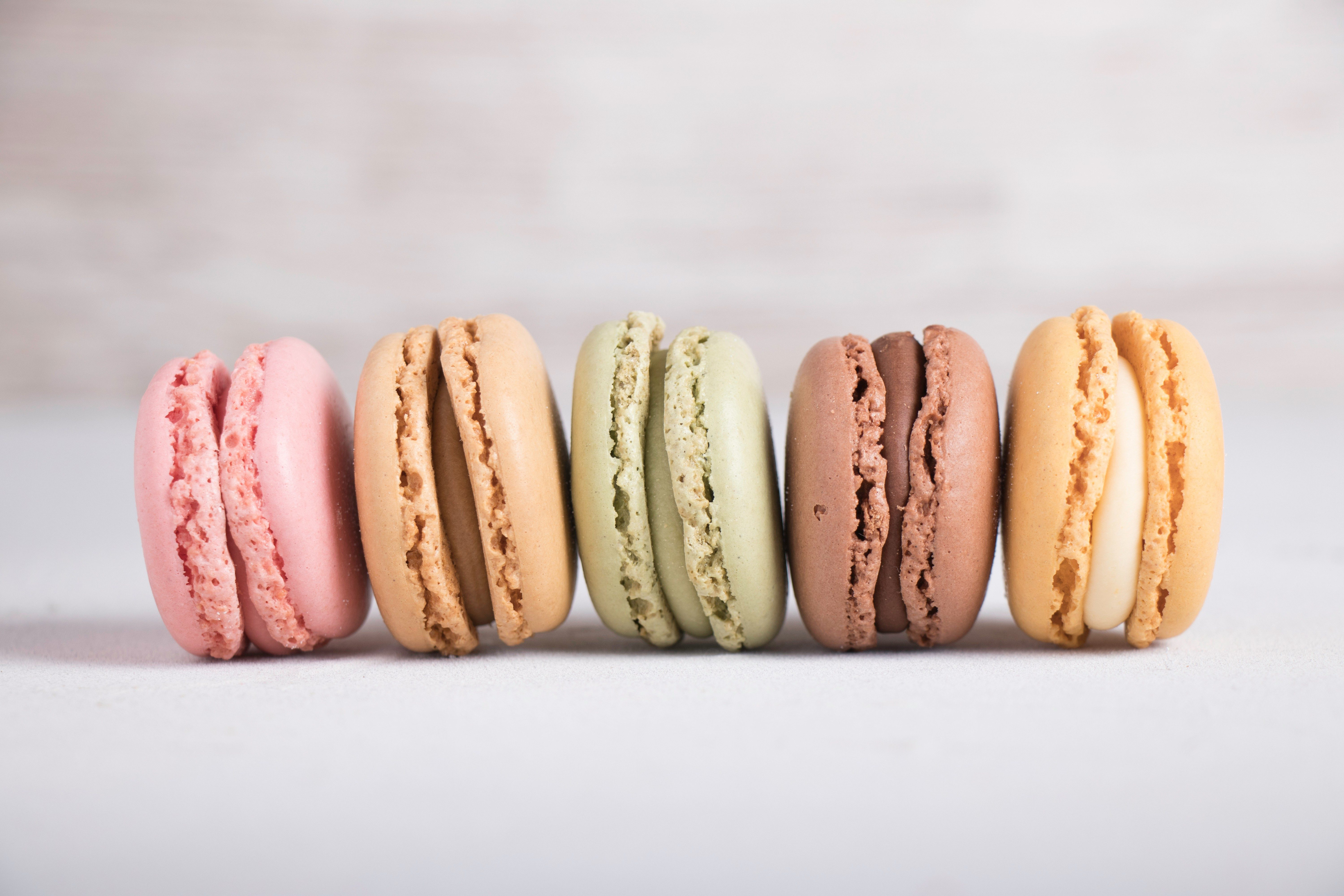 Colorful pastel macarons on gray background