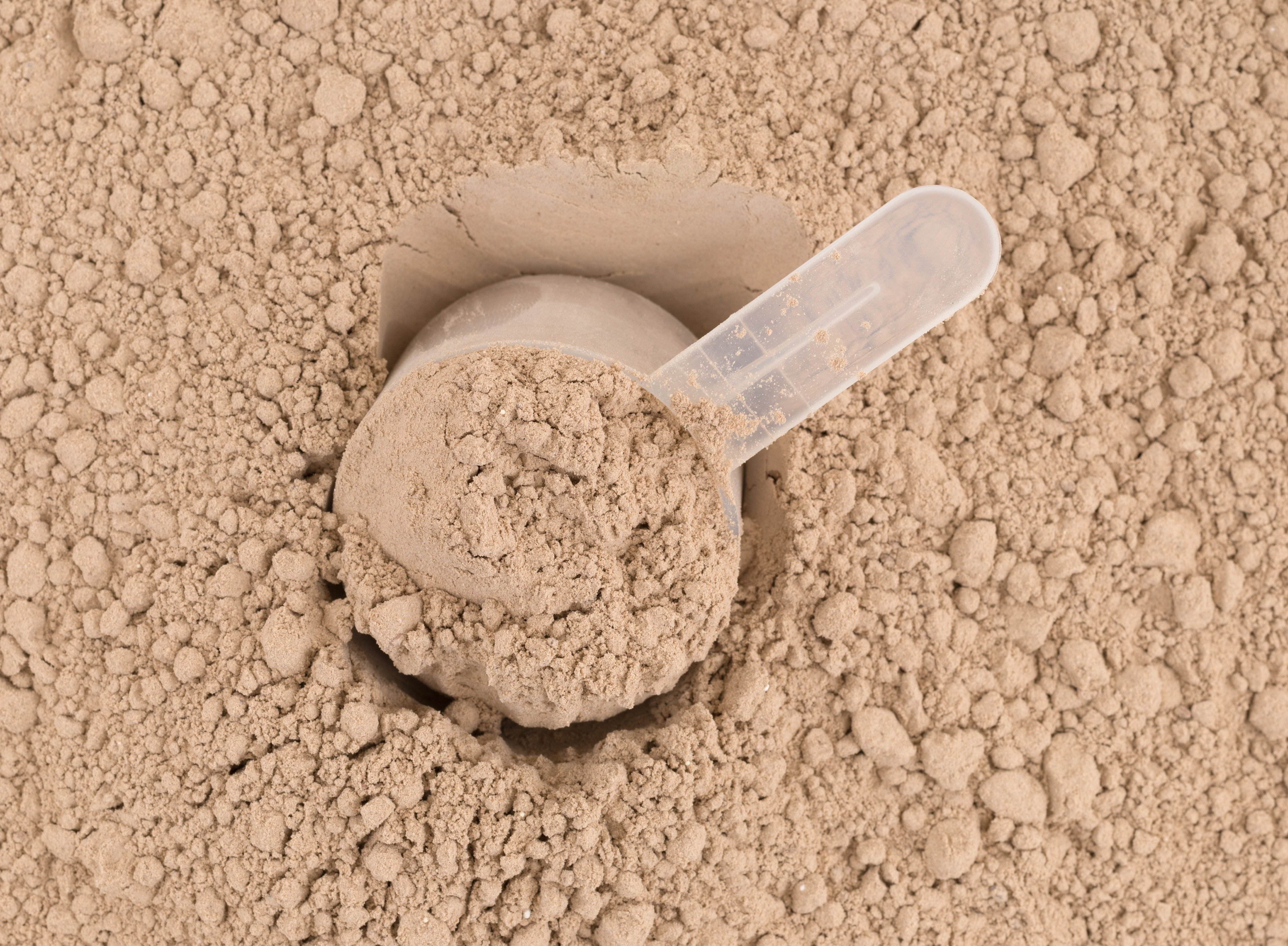 Top close of ground chocolate flavored plant protein with a plastic measuring scoop.