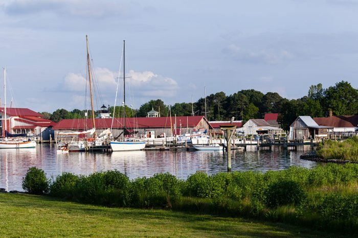 Yachts and boats in harbour of St Michaels on Chesapeake bay with heron