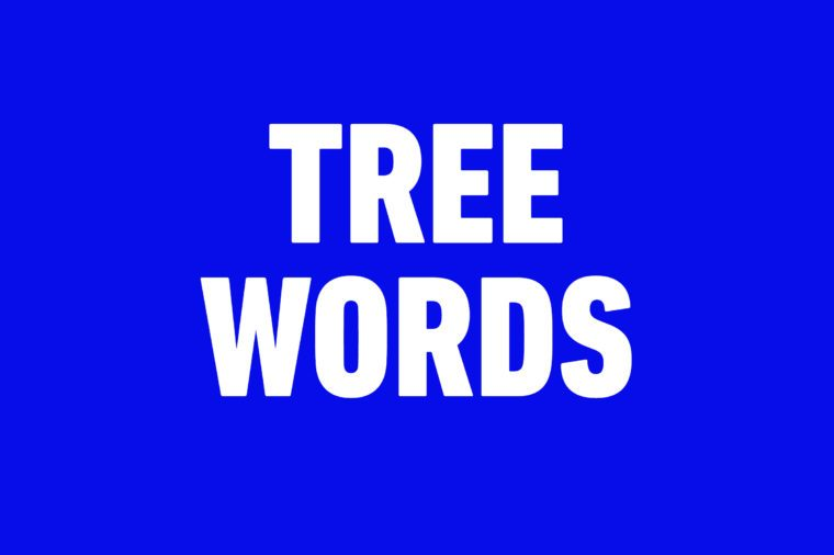 tree words