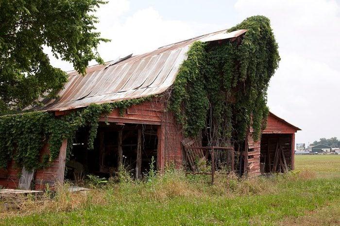 Alabama: Mooresville
