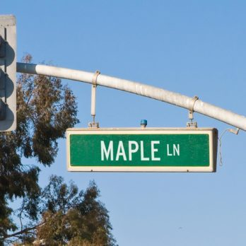 Can You Guess the Most Common Street Names in Your State?