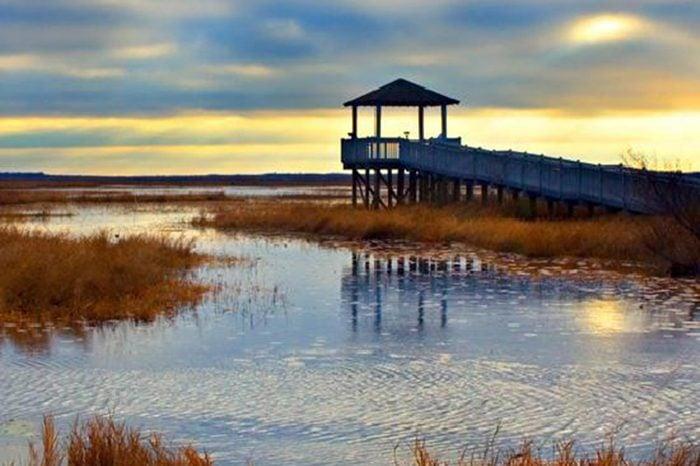 17_LouisianaNorth-Beach,-Lake-Charles