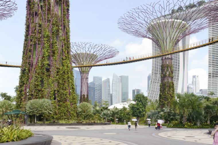 Gardens by the Bay, Singapore, Singapore. Architect: Grant Associates, 2012.