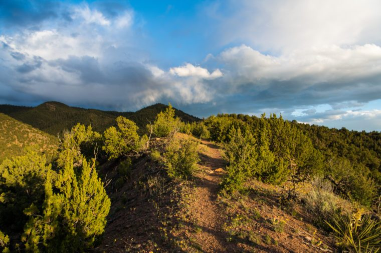 Dramatic light at dusk on a hiking trail through juniper and high hills under a beautiful sky of with storm clouds - Sangre de Cristo Mountains near Santa Fe, New Mexico