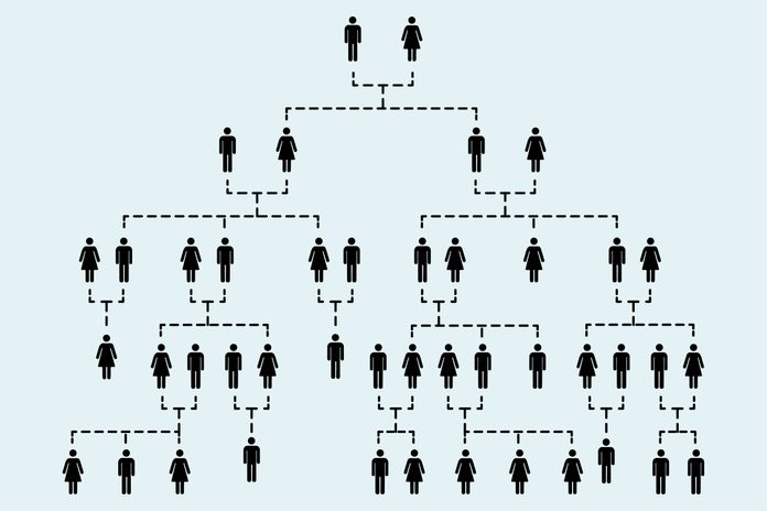 Complicated family tree of several generations