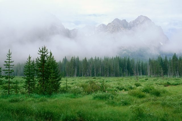 Rising mist along the Fishhook Creek Trail, Sawtooth Range, Idaho