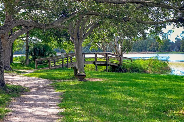 walk path along the shore of Lake Taylor and under the shade of the forest trees, in Pinellas County, West Florida, USA