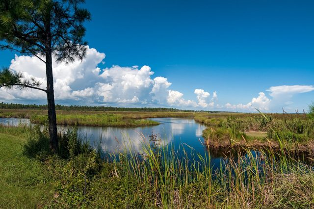Gulf Shores State Park
