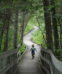 Itasca State Park, Minnesota