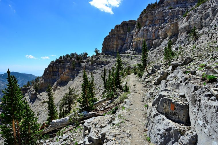 A narrow section of North Loop Trail leads to the summit of Mount Charleston in Spring Mountains National Recreation Area near Las Vegas, Nevada